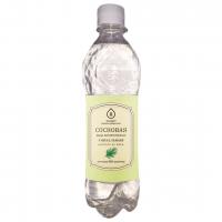Подробнее: Флорентинная вода Сосновая 0,5 л.